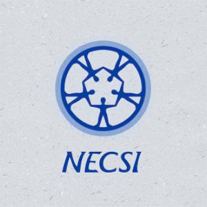 NECSI